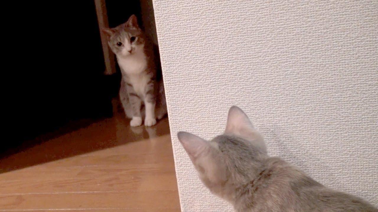 モアレとクリエ #08 「おかしな二人」