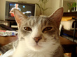 20080609_14.jpg