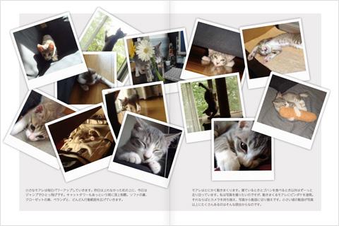 20100629_02.jpg