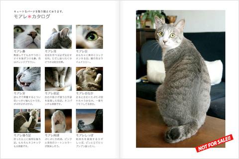 20100629_04.jpg
