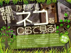 20110201_02.jpg