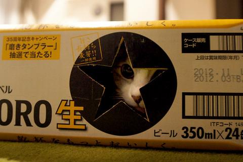 20120704_03.jpg