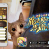 『魔法使いと黒猫のウィズ』TVCM